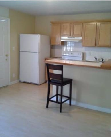 Priv suit kitchen livingr bedr bath - Duluth - House