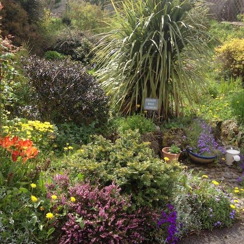 Quiet & Peaceful Ivynook Cottage - Birr