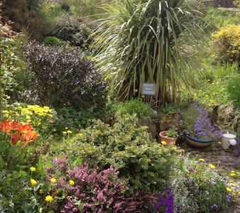 Quiet & Peaceful Ivynook Cottage - Birr - บ้าน