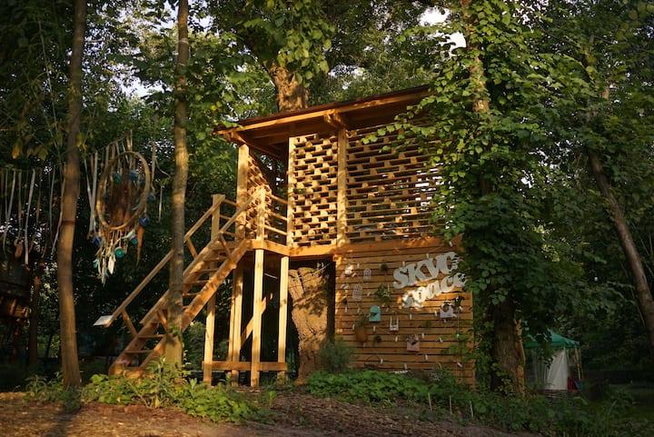Treehouse in Hydropark. Домик на дереве. Гидропарк
