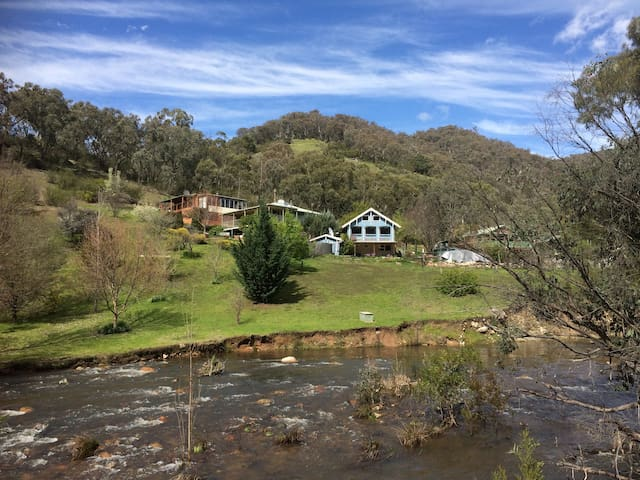 A view from Micalong Creek