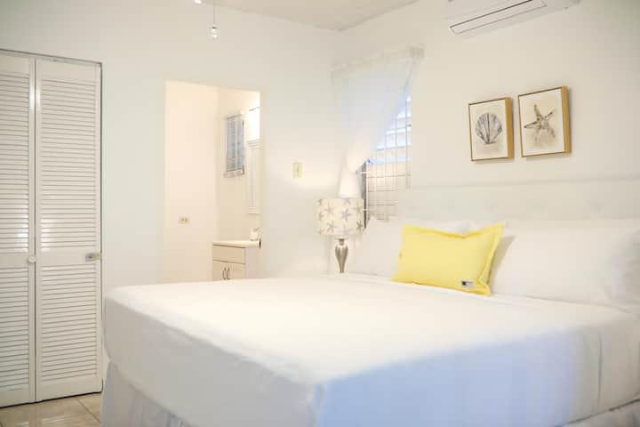 New Kingston's Deluxe Apartment