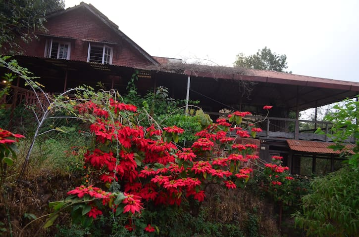 Home stay  in an Organic Farm House - Panchgani - Nature lodge