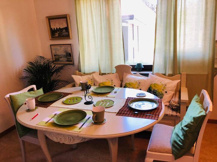 Cosy Apartment in Uppsala