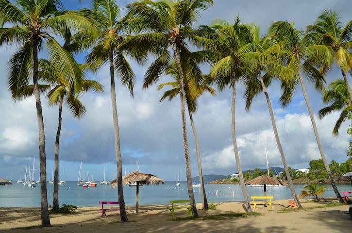 Windswept 2: Oceanfront, Views, Pool, Near Beach