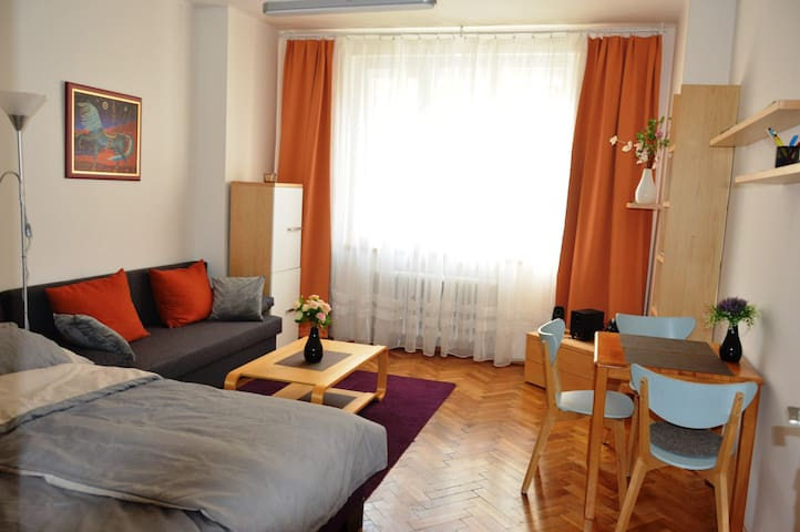 Apartment in Prague centre with a great atmosphere - Zizkov - Apartment