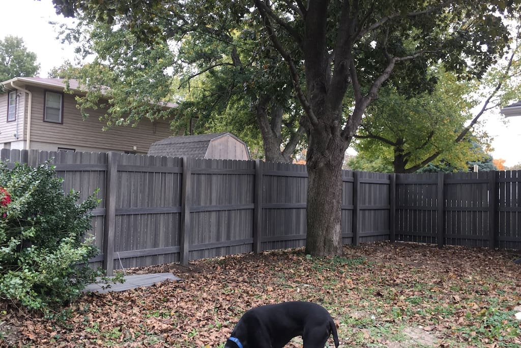 Private fenced in backyard