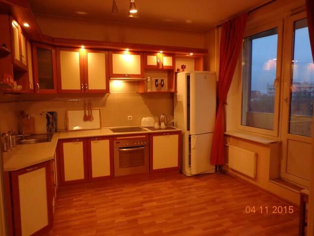 Кухня (плита, посуда, посудомойка, холодильник, телевизор, wi-fi)