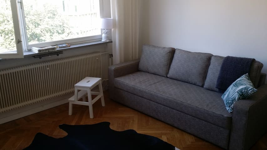 1 room flat Stockholm, Södermalm. Very central.