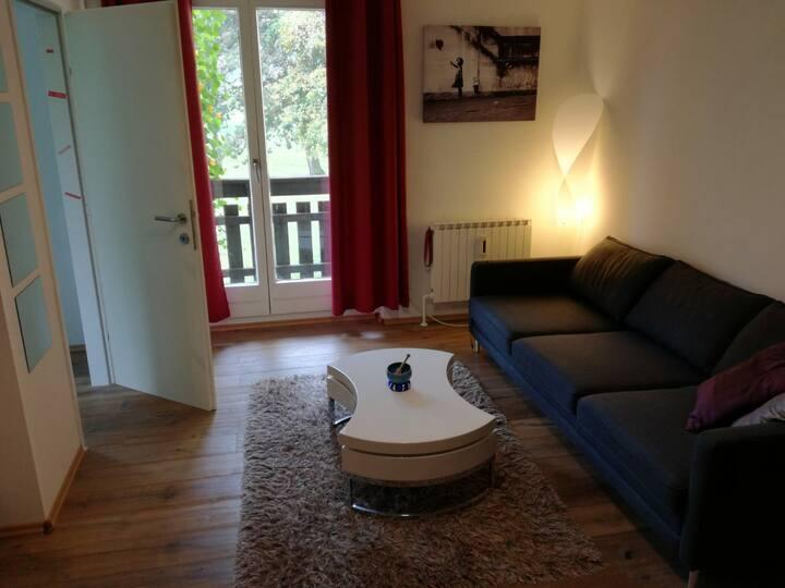 Nice modern flat near Linz!!