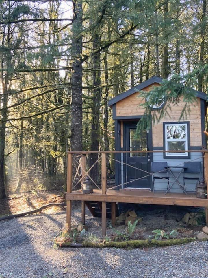 Out of Bounds: Tiny Home amongst an acre of trees