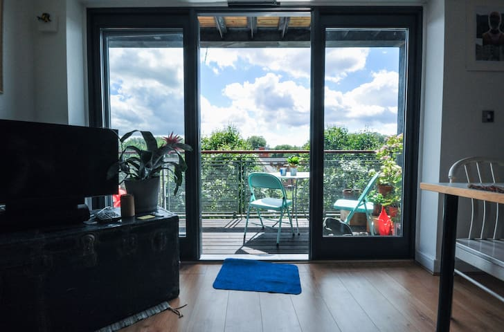 Bright Clapton flat with stunning views