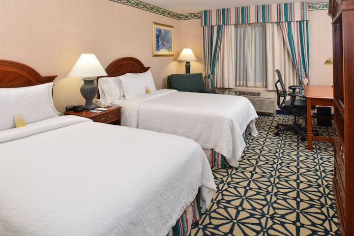♕♕♕ Friendly Double Two Double Beds At Downtown ♕♕♕