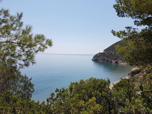 Unique Beachfront Villa with panoramic sea views