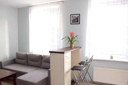 Lovely apartment in Boguszów-Gorce - Boguszów-Gorce - Lakás