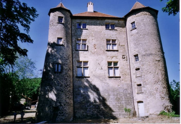 Le Chateau - Charmes-sur-l'Herbasse - Holiday home