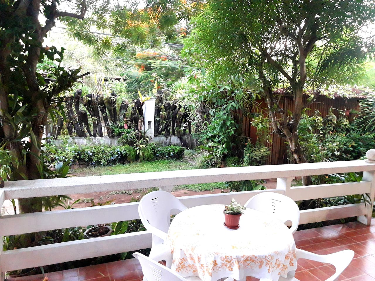 Early morning, while having breakfast in our terrace, you can hear, see's and enjoy a wonderful multi-color of butterflies, bee's, native humming bird, rice bird and maya.