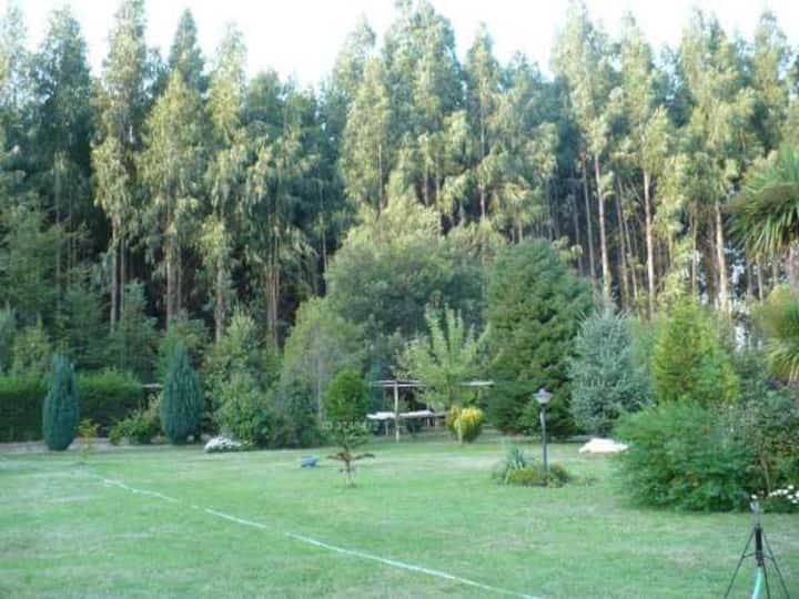 Cabañas en entorno natural