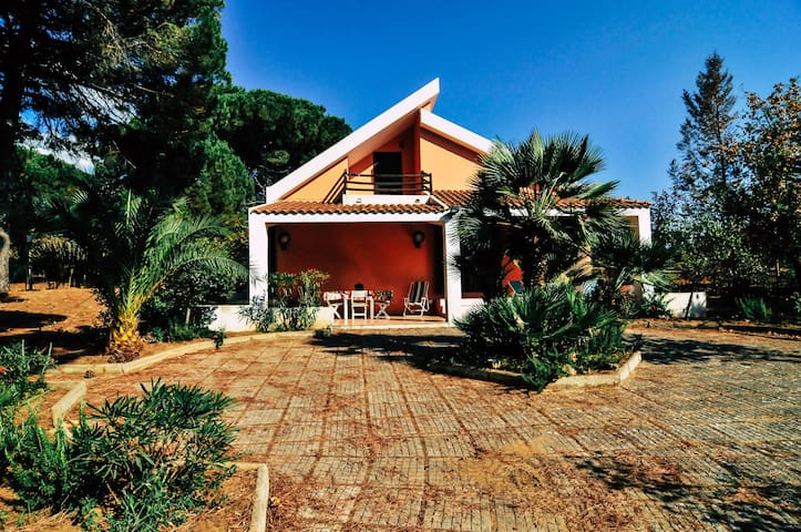 Villa Giulia a Dream into the woods