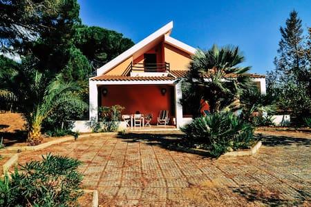 Villa Giulia a Dream into the woods