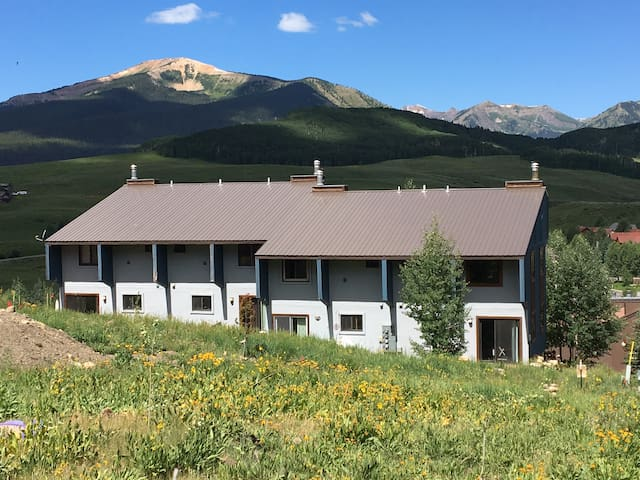 Mt. CB condo w/ fireplace close to lifts - Crested Butte - Wohnung