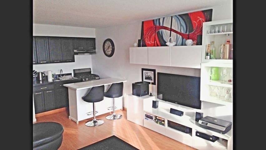 Chicago Modern Studio in High Rise building