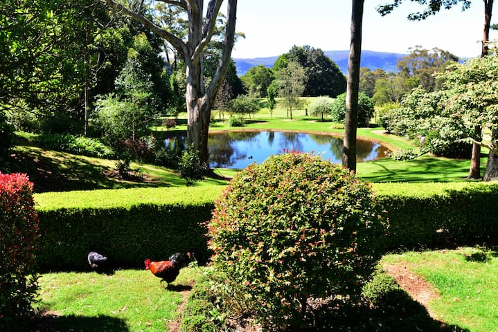 Berry Mountain Lodge - Bellawongarah - Other