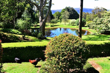 Berry Mountain Lodge - Bellawongarah - Annat