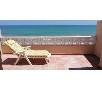 House on the beach (Casa grande primera linea)