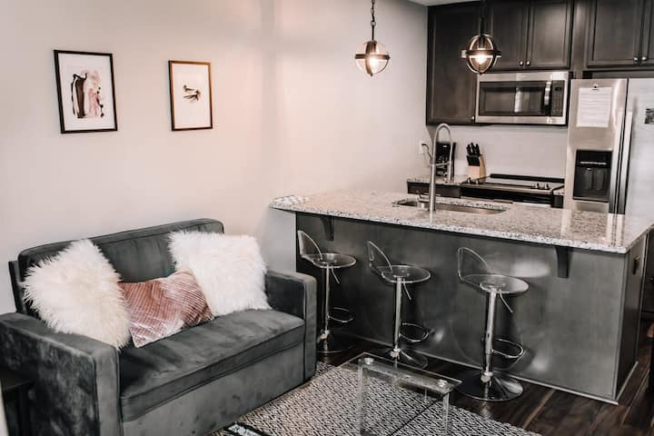 Modern 1 BR Apartment! Quick ride to Downtown!
