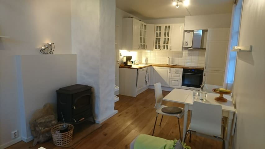 Bring your bags! - Bergen - Appartement