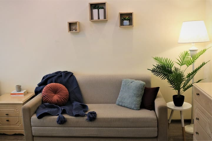 Cozy and bright 1 BR apartment in the Downtown