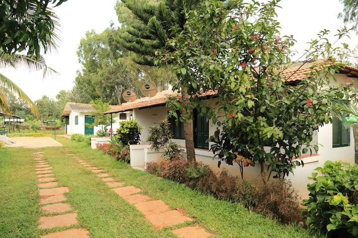 Kadackal Farms - Mallika, Hivehomes, Bangalore