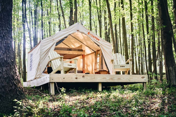 Tentrr –Hollow Tree Camp