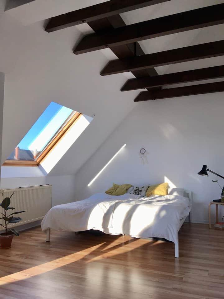 Ruhige, helle Wohnung mit großem Südbalkon
