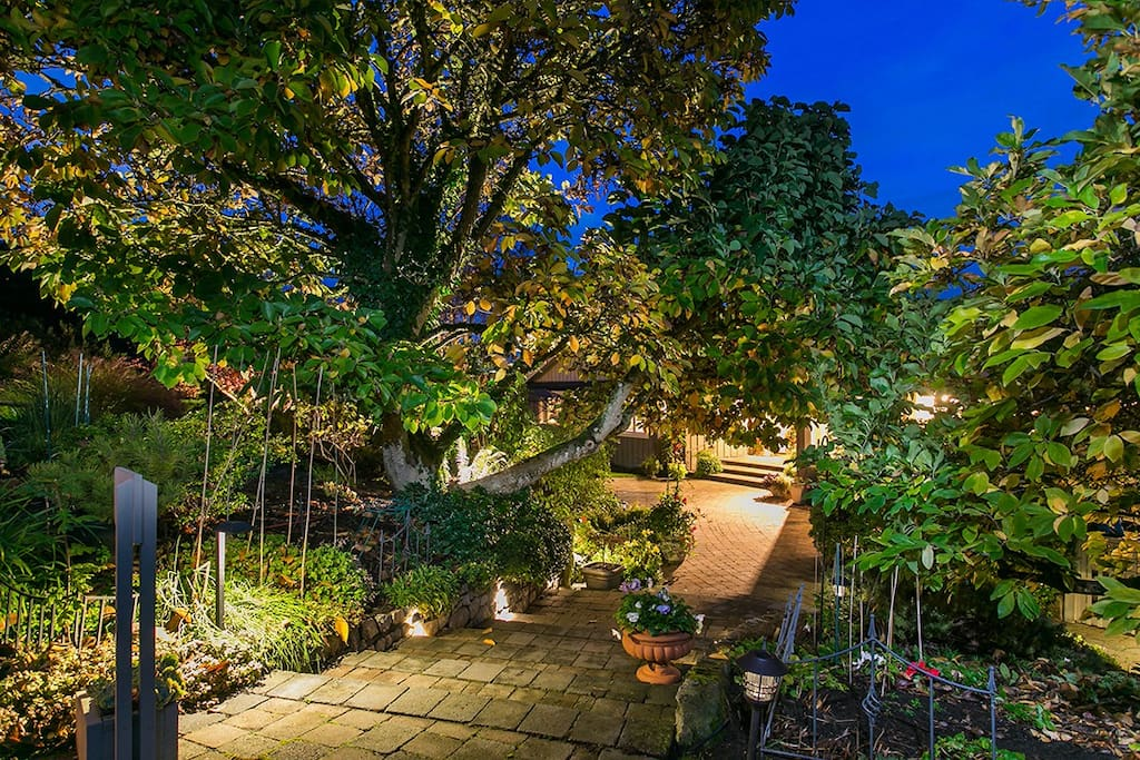 Looking down onto the Courtyard in the early evening in November our garden is lit at night for continued enjoyment.