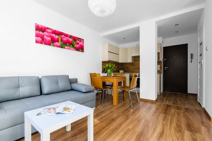 Apartment in the Centrum of Warsaw