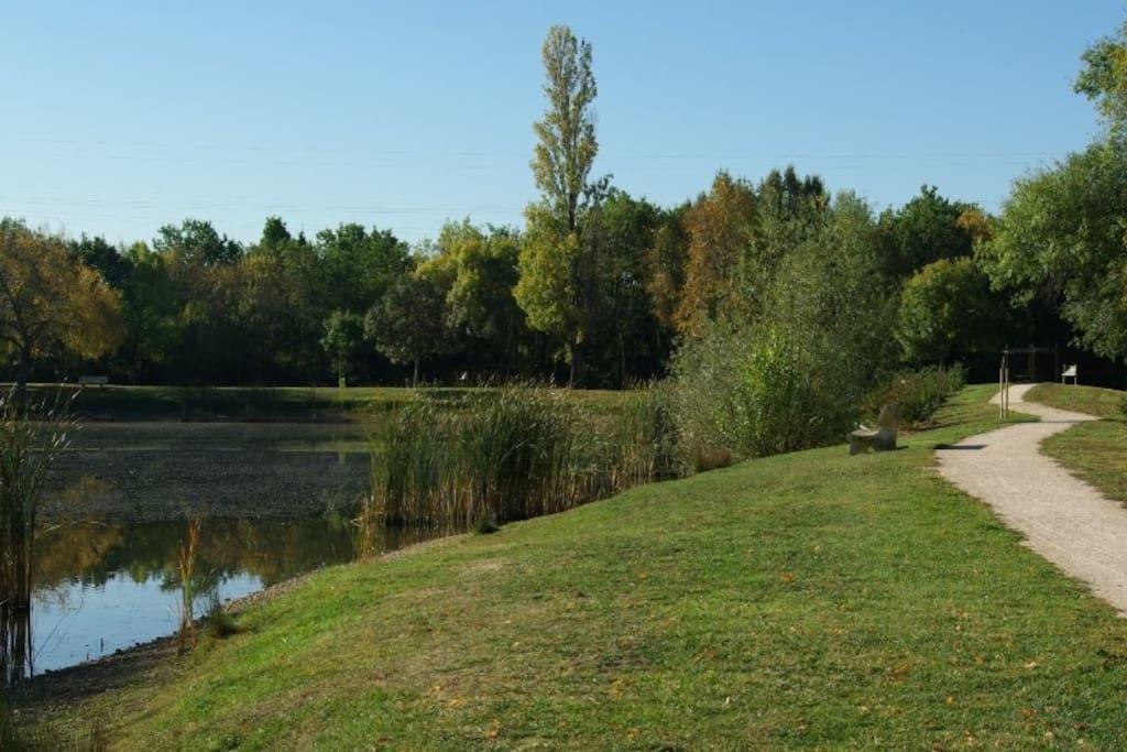 Lac des Chanterelles à 200m