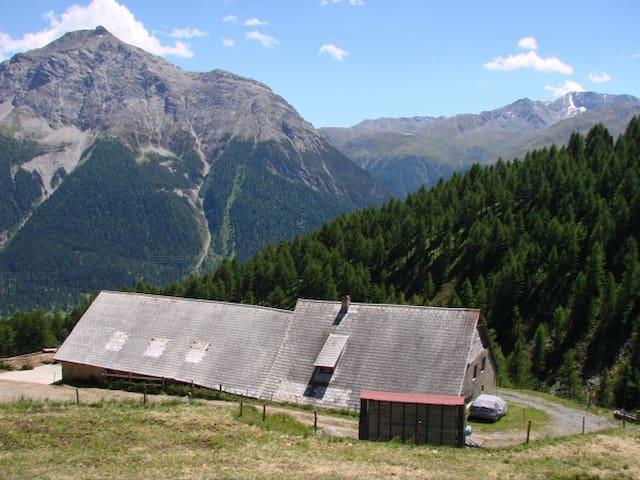 Alp Es-Cha Dadour