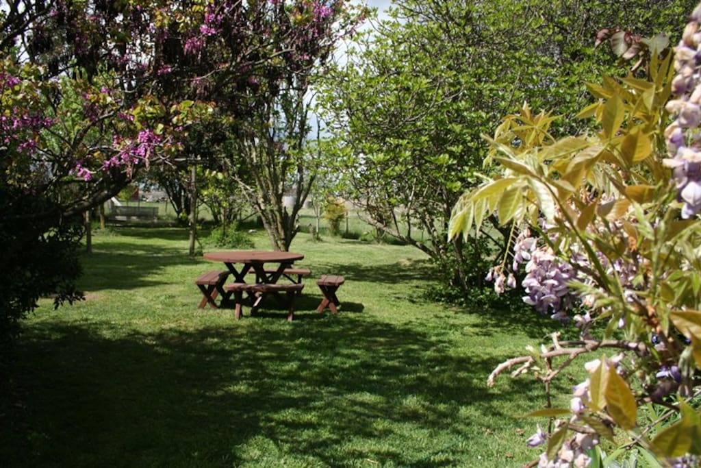 Enjoy a beautiful breakfast in the garden
