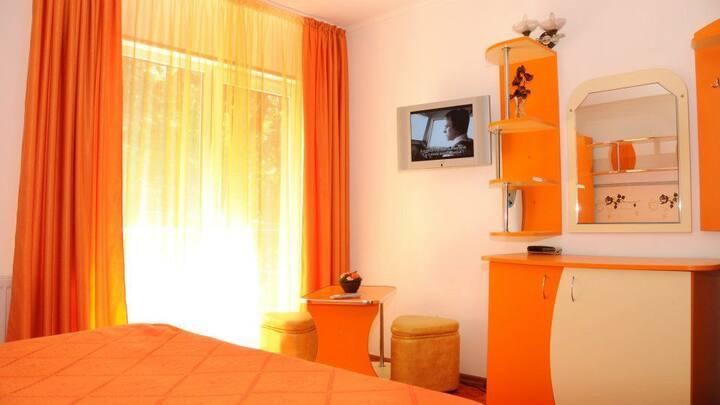 Cozy Mountain Orange Room