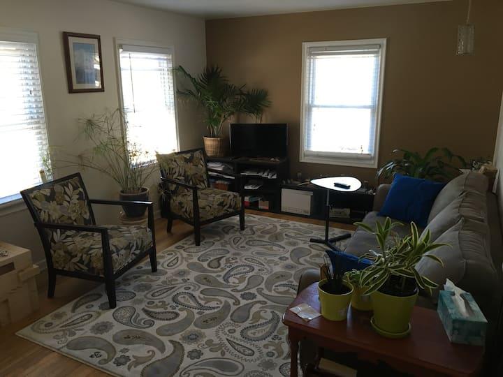 upper sugarhouse basement room