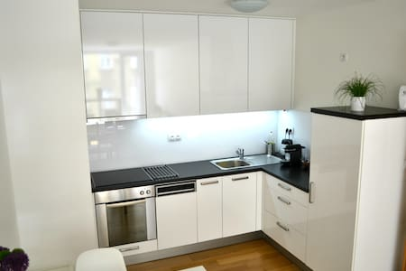 Modern Two-Rooms Apartment Near The Center Of Prag - Praha - Huoneisto