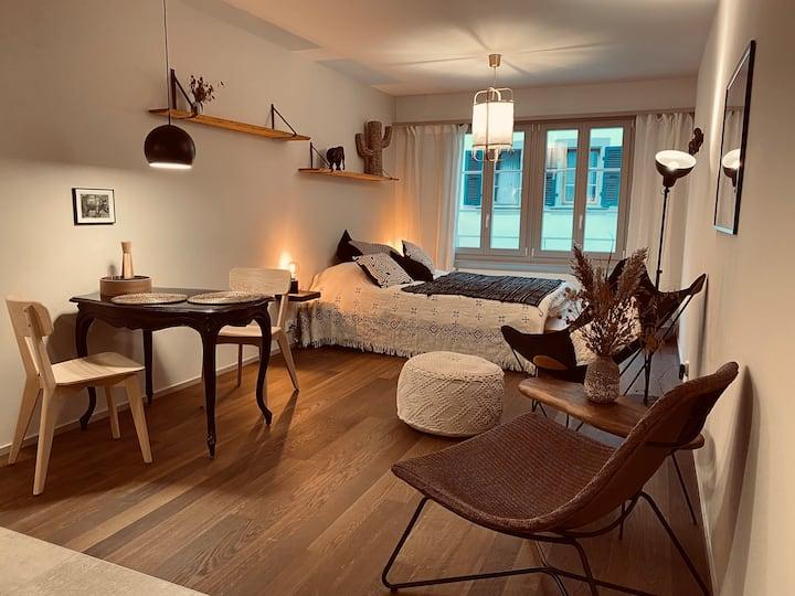 Magnifique studio rénové en vieille ville de Nyon