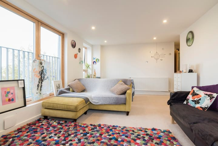 Sunny and Central, Very Clean, East London Flat