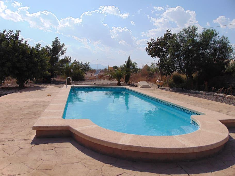 10 x 4m private swimming pool