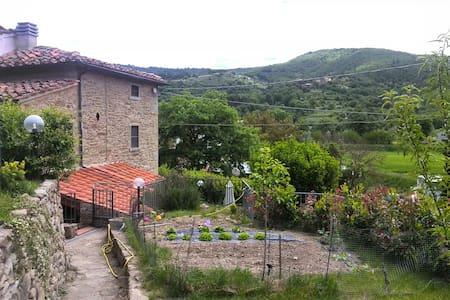 Casa del Pero (terratetto rustico)
