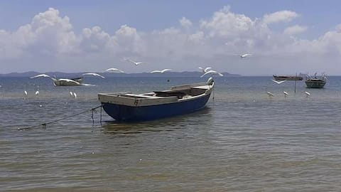 Casa ventilada - Praia de Cabuçu