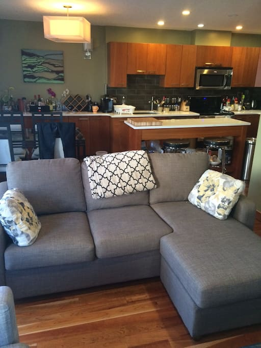 Double pullout couch.