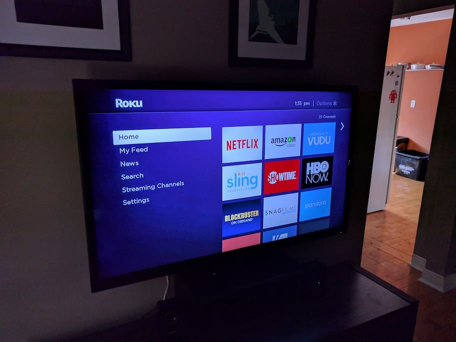 ROKU w/ Netflix on TV